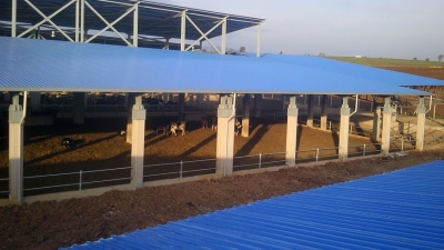 Agriculture and Livestock Industry